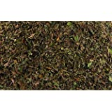 Peppermint leaves. Dried and cut. 100% organic (20 tea bags)