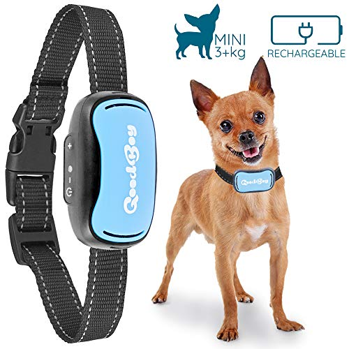 GoodBoy Small Dog Bark Collar for Tiny to Medium Dogs Rechargeable and Waterproof Vibrating Anti Bark Training Device That is Smallest & Most Safe On Amazon - No Shock No (Good Dog Nylon Collar)