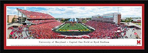 Maryland Terrapins Art Glass - 1