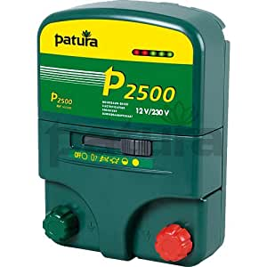 P2500 Multi-Function Energiser for230 V/12 V, with carry box - A32315