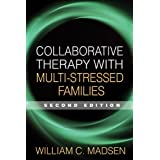 Collaborative Therapy with Multi-Stressed Families, Second Edition
