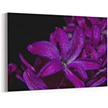 Westlake Art - Canvas Print Wall Art - Flower Purple on Canvas Stretched Gallery Wrap - Modern Picture Photography Artwork - Ready to Hang - 18x12in (*7x-4c0-4fb)