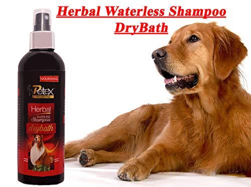 Petex Pet Lifestyle Nourishing Herbal Dog Waterless Shampoo Drybath for Skin & Coat Shine for Healthy Petcare, Helps Eliminate Odor and Increase Hair Gloss (250ml) (B07PXGMGMF) Amazon Price History, Amazon Price Tracker