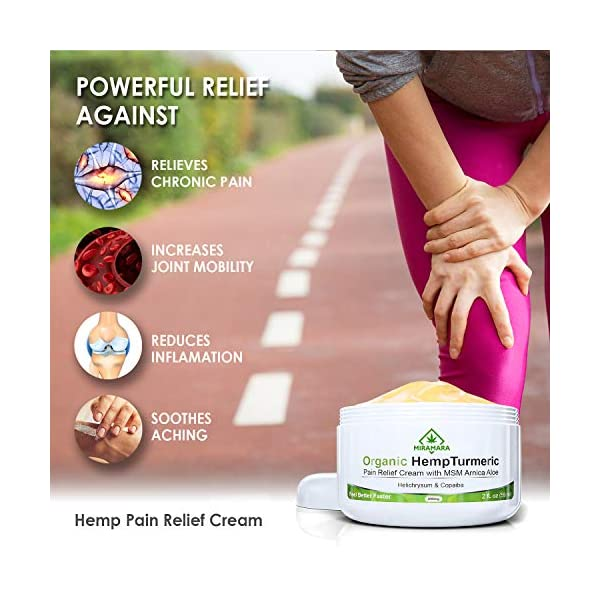 Joint & Muscle Active Pain Relief Cream – Deep Relief Hemp Oil Active Gel for Inflammation, Knee, Shoulder & Back Pain. Hot Hemp Cream with Arnica, MSM, Turmeric & Aloe Vera (250 ml)