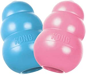 KONG Puppy KONG Dog Toy, Medium, Assorted Colors