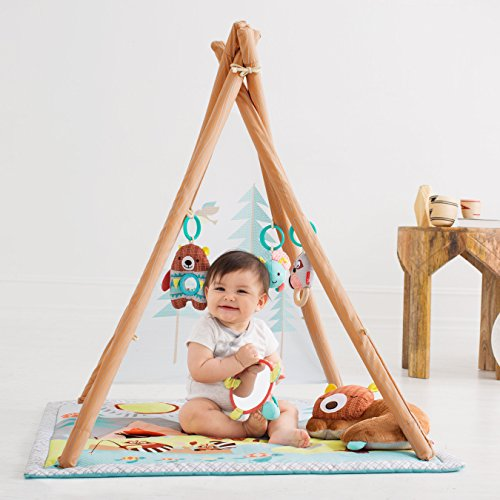 Skip Hop Baby Infant and Toddler Camping Cubs Activity Gym and Playmat, Multi