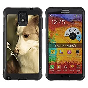 Suave TPU GEL Carcasa Funda Silicona Blando Estuche Caso de protección (para) Samsung Note 3 / CECELL Phone case / / Border Collie Corgi Pet Summer Dog Nature /