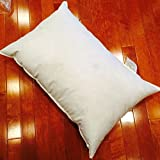 Polyester Woven Premium Pillow Form - 30 x 42