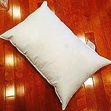 Polyester Woven Premium Pillow Form - 30 x 42