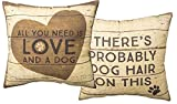 Primitives by Kathy Decorative Dog Hair Throw Pillow, 16-Inch Square, Cream For Sale