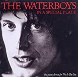 In A Special Place by The Waterboys (2011-05-17)