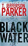 Black Water: A Merci Rayborn Novel (Merci Rayborn Novels Book 3)