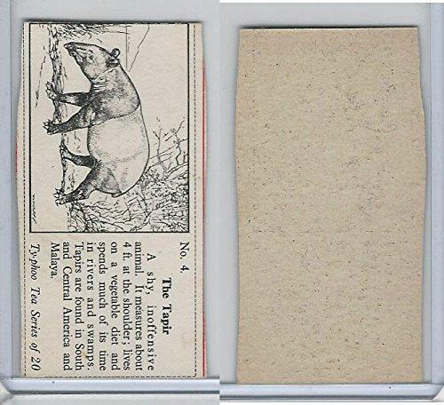 T0-0 Typhoo Tea, Wild Animals, 1955, 4 Tapir