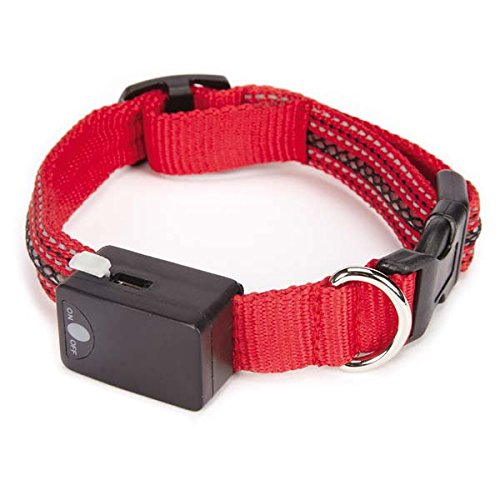 Casual Canine LED Dog Collar, 12 to 16-Inch, Red