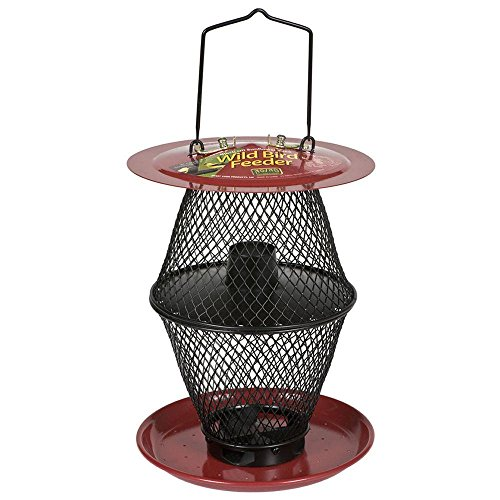 - No/No CNCD00351 Sunflower Lantern Wild Bird Feeder