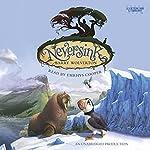 Neversink | Barry Wolverton