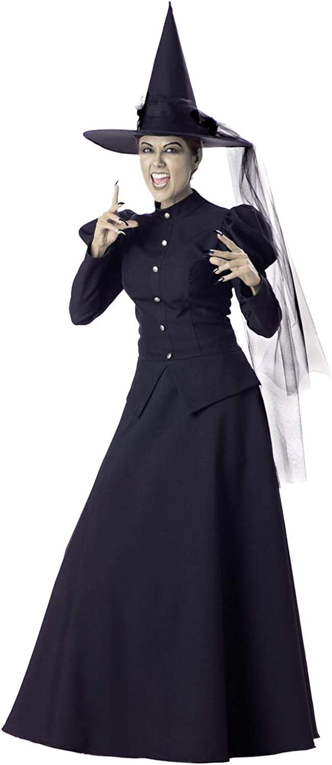 B0009VRQ16 InCharacter Wretched Witch Adult Costume 51DcSFzH4OL