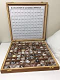 Yantra 100 Rocks and Minerals Collection in Wooden Box Geology Civil Educational