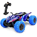 GPTOYS RC Cars 1:16 Scale 2.4GHz 4WD Off Road Remote Control Car Vehicle with High Speed ATV of 36 killometer/h (Purple)