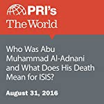 Who Was Abu Muhammad Al-Adnani and What Does His Death Mean for ISIS? | Shirin Jaafari
