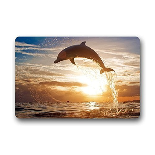 Fandim Fly Custom Dolphin Fish Ocean DoorCover Washable Apartment Office Floor Mats Front Doormats Non-Slip Bedroom Carpet Home Kitchen Rug 18 x 30 (Custom Fish)