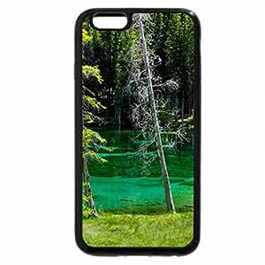 iPhone 6S Plus Case, iPhone 6 Plus Case, FOREST POND