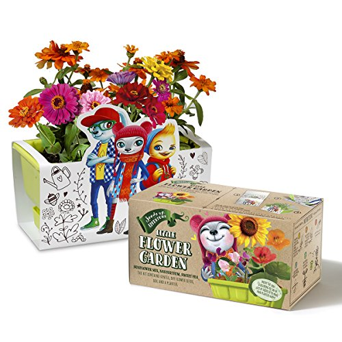 Children Flower Garden kit, Planter Kit comes with Organic Flower Seeds, Coloring Planter Case & Markers