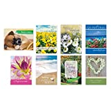 Pack of 24 Religious Get Well Cards, Boxed