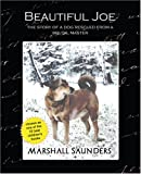 Beautiful Joe, Saunders, 1594627304