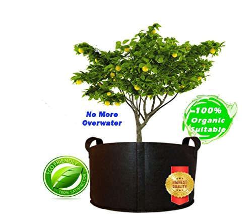 Qik Grow HeavyDuty Smart Fabric Breathable Root Grow Bags 10 Gallon Black