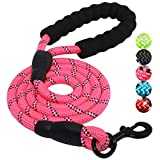 Best Dog Leash For Pullings - BAAPET 5 FT Strong Dog Leash with Comfortable Review