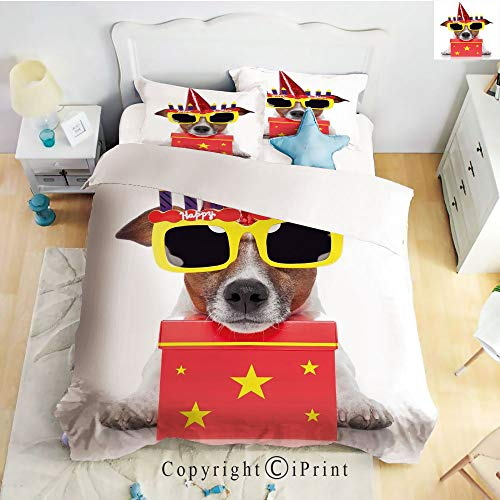 Hight Quality 4 Piece Bed Sheet Set,Party Dog with Sunglasses and Cone Hat Boxes Stars Image,Red and Yellow,King Size