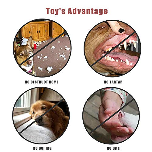 YBEL Puppy Teething Chew Toys for Medium Dogs-10 pcs Duarable Tnteractive Dog Toys Small Dogs-With Rope Tennis Balls for dog,Goughnuts Dog Toys,Squeaky Toys pet supplies,Tug of war dog toy