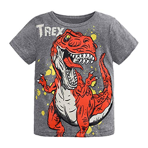 Toddler Kids Baby Boys Girls Clothes Cartoon Short Sleeve T-Shirt Tops (Gray Dinosaur, 4-5 -