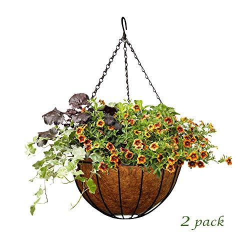 - MTB Garden Hanging Baskets 14