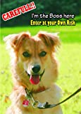 Attention - Beware Fun Sign Dog Basque Shepherd Dog Dog for your home or house SF984 Size A4