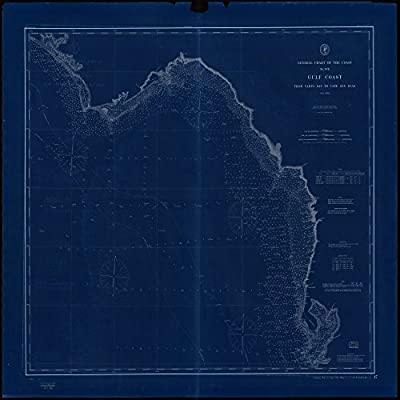 Amazon 8 x 12 reprinted blueprint style nautical map of general amazon 8 x 12 reprinted blueprint style nautical map of general chart of the coast no xvii gulf coast from tampa bay to cape san blas 1895 noaa 88a malvernweather Image collections