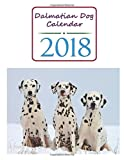 Dalmatian Dog Calendar 2018: 2018 Monthly Calendar with USA Holidays, 12 Dalmatian Dogs, 12 Full Color Photos, Personal Calendar Schedule Journal ... (Agendas, Planners, Calendar and Organizers)