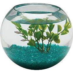 Aquarius BL2.25GLS 1/2-Gallon Glass Bowl
