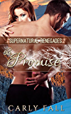The Promise (A Supernatural Renegades Novella): A Supernatural Renegades Novella