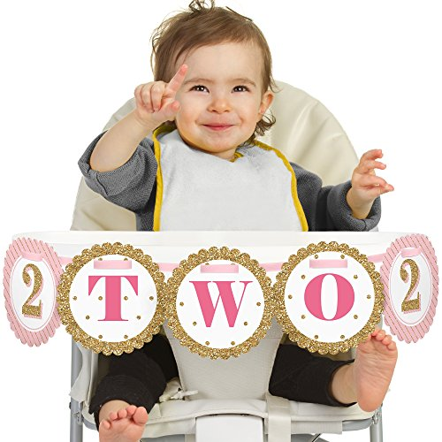Big Dot of Happiness Two Much Fun - Girl - 2nd Birthday High Chair (Girl 2nd Birthday Party Themes)