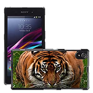 Hot Style Cell Phone PC Hard Case Cover // M00047313 animals tiger wild aggression // Sony Xperia Z1 L39H