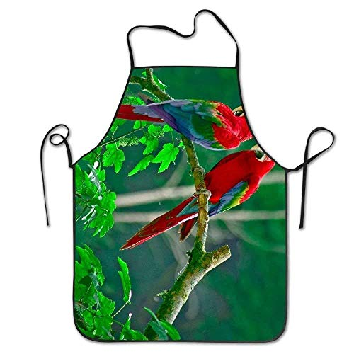 - ZOMOY Parrots Paradise Birds Animals Deluxe Aprons Personalized Printing Kitchen Apron,