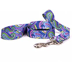 "Yellow Dog Design Paisley Power Dog Leash, Large-1"" Wide and 5' (60"") long"