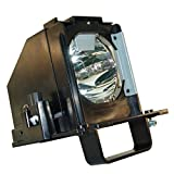 JTL 915B441001 Replacement Lamp with Housing for