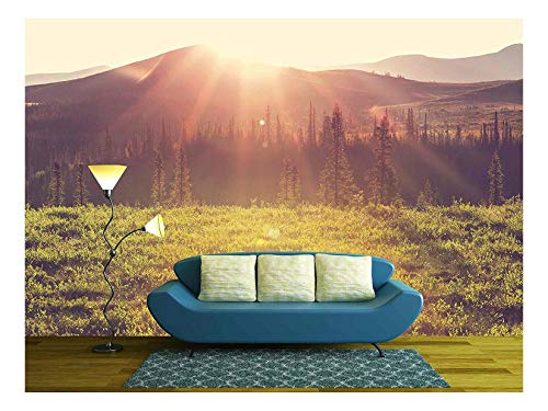 wall26 - Tundra Landscapes Above Arctic Circle - Removable Wall Mural | Self-Adhesive Large Wallpaper - 100x144 inches