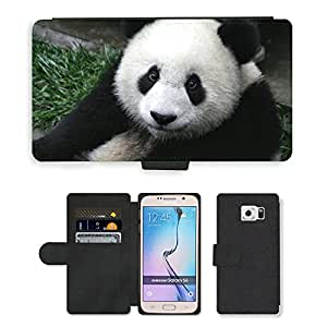 Super Stella Cell Phone Card Slot PU Leather Wallet Case // M00144352 Panda Cub Wildlife Zoo Cute China // Samsung Galaxy S6 (Not Fits S6 EDGE)