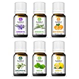 SUNIRA Essential Oil Gift Set of 06, Therapeutic Grade, 100% Pure Essential Oils (Lavender, Rosemary, Basil, Lemon, Eucalyptus & Orange)