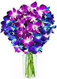#9: KaBloom Exotic Orchid Bouquet of 5 Blue Dendrobium Orchids & 5 Purple Dendrobium Orchids from Thailand with Vase