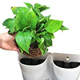 Worth Garden SELF Watering Indoor/Outdoor